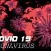 BC100V Beal Virus Kletterseil Unisex Uni