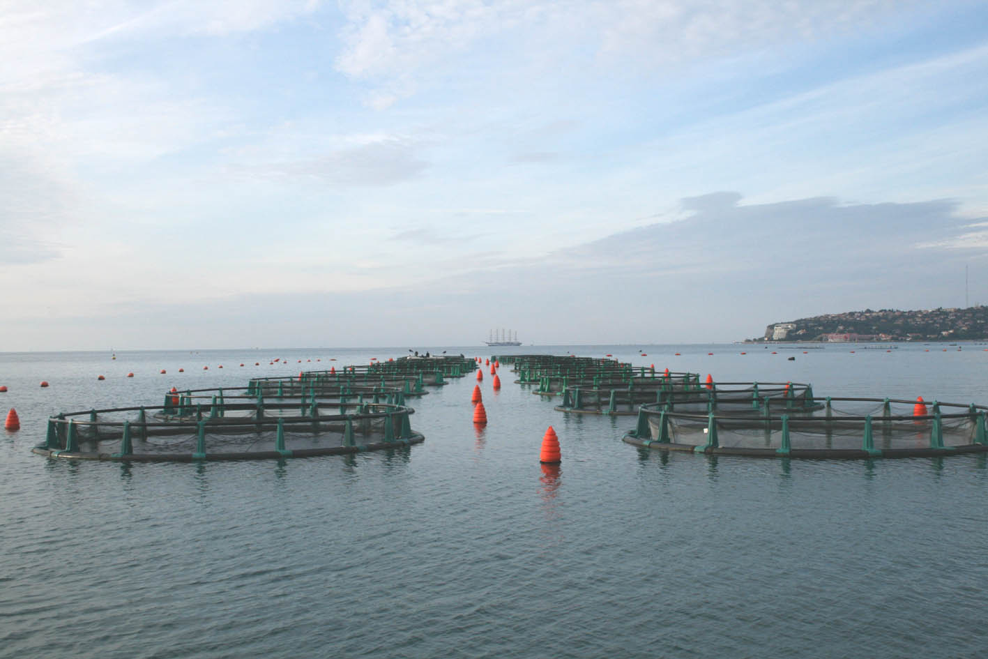 A modern seawater fish farm off the coast of Slovenia.