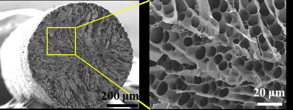 A microstructured fibre (left) contains pores (right) that can be filled with a phase-changing material that absorbs and releases thermal energy. Credit: ACS Applied Materials & Interfaces 2020, DOI: 10.1021/acsami.0c02300