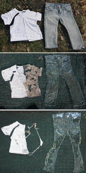 Biodegradation of textiles. The start, the third excavation after seven weeks and the last digging after 14 weeks in an earth burial test in which the degradability of the materials is assessed. The textiles are put on a grid and placed in the burial position. The left side of the t-shirt is 100% polyester and the right side is 100% cotton. The jeans are 99% cotton and 1% elastane. They are buried in microbiologically standardised earth. © Hohenstein Institute